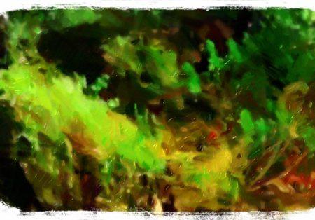 世界樹と呼ばれた樹(1/6)