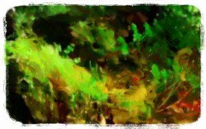 世界樹1話