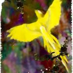 世界樹と呼ばれた樹(3/6)