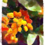 世界樹と呼ばれた樹(2/6)