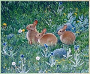 草原の画家 オゴンバイラ展