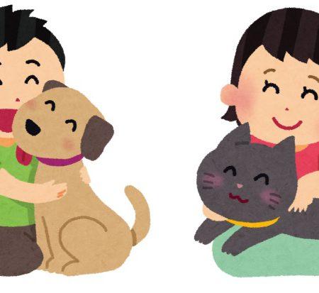 第29回日本動物児童文学賞