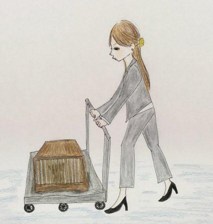 猫アンテナ狂想曲(12/15)
