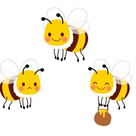 第5回「ミツバチの絵本コンクール」